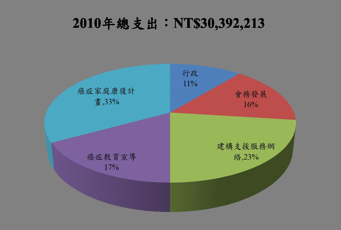 2010總支出