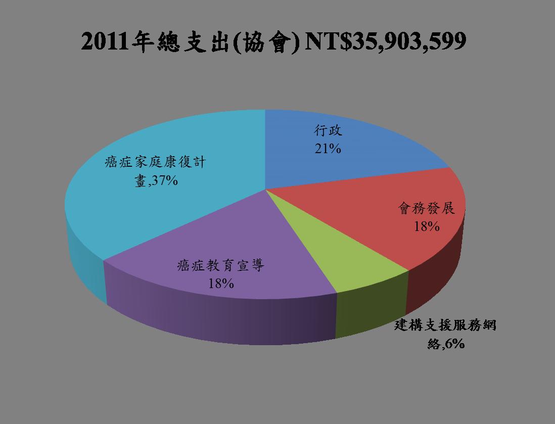 2011總支出