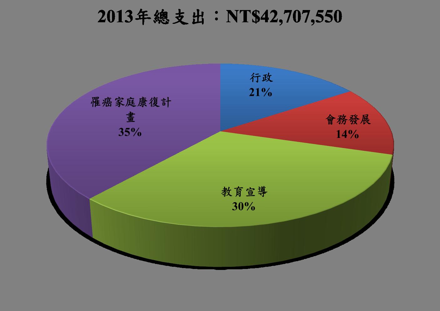 2013總支出